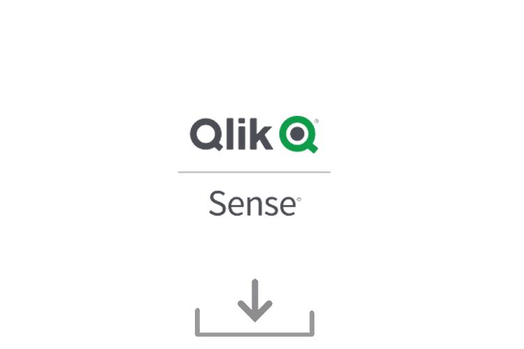 Try Qlik Sense® Business